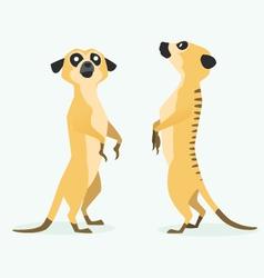 meerkat cartoon vector image