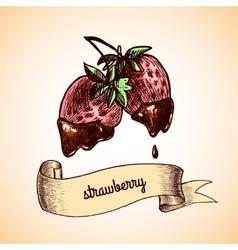 Strawberry chocolate sketch vector image vector image