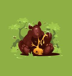 brown bear eat sweet honey vector image