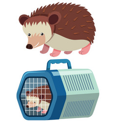 Cute hedgehog in the cage vector