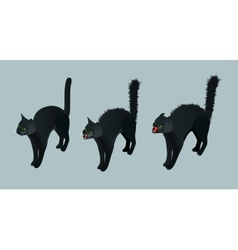 Isometric Black Cat Set calm cat meowing vector