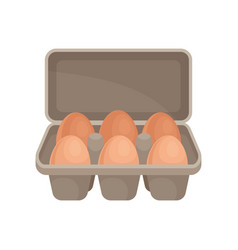 raw eggs in cardboard container organic farm vector image