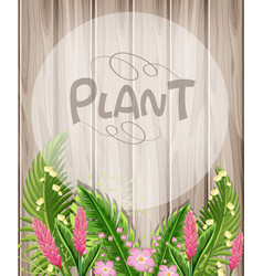 wooden background with pink flowers and green vector image