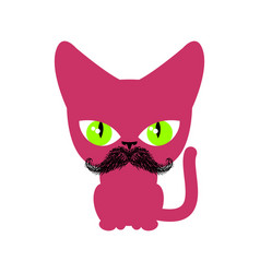 cat hipster with mustache isolated pet on white vector image vector image