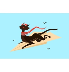 Cat on a plane vector image vector image