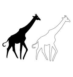 Giraffe silhouette icon giraffe outline v vector