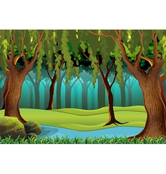 Scene with trees in the jungle vector image