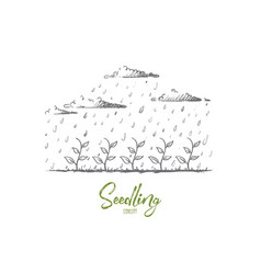 seedling concept hand drawn isolated vector image
