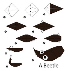 step by step instructions how to make origami vector image