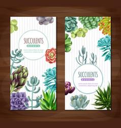 succulent plants vertical banners vector image
