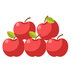 ripe organic apples with stems and leaves vector image