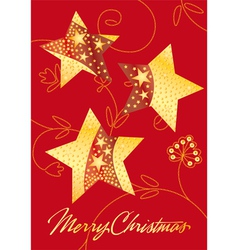 Starry Christma vector image