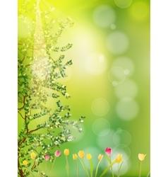 Beautiful spring flowers EPS 10 vector image