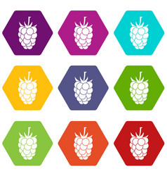 blackberry fruit icon set color hexahedron vector image