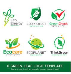 Green leaf logo template design vector