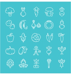 Vegetables Line Icons 6 2 vector