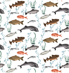 colorful marine life seamless pattern vector image