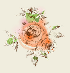 cute roses decoration for invitations or greeting vector image