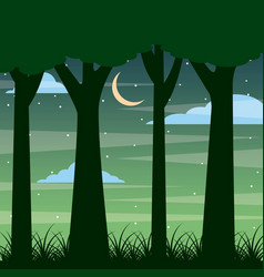 forest trunk of tree night landscape with moon and vector image