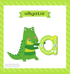 Letter a lowercase tracing alligator vector
