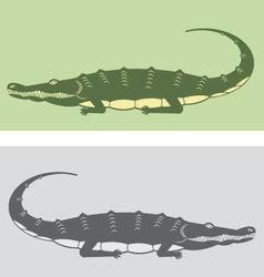 Premium Crocodile vector image