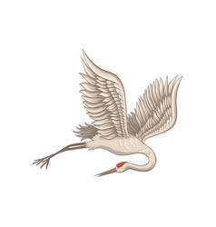 Red-crowned crane flying with tilted head down vector