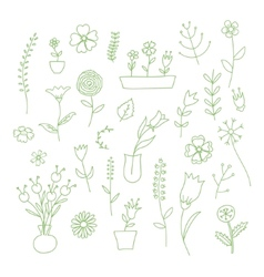 Set of spring plants and flowers hand-drawn vector