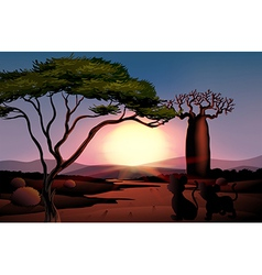 A sunset at the desert with animals vector image vector image