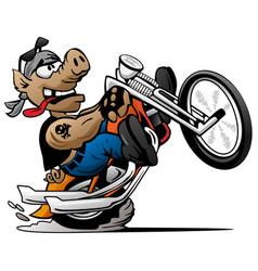 biker hog on a motorcycle cartoon vector image