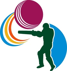 cricket player batsman batting ball vector image vector image