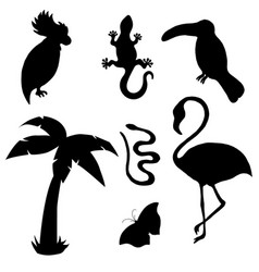 animal silhouettes flamingo gecko cockatoo touc vector image