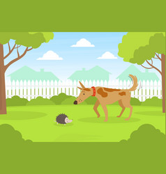 Cute dog looking at hedgehog sitting on lawn vector