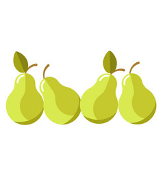 green organic juicy pears with leaves isolated vector image