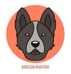Portrait of karelian bear dog vector
