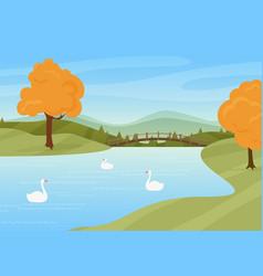 swans swim in river rural autumn nature landscape vector image
