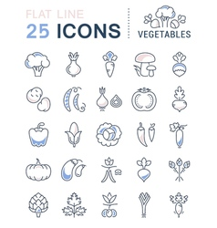 Vegetables Line Icons 3 vector image