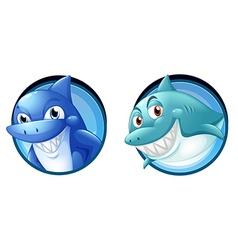 Wild sharks on round badges vector image