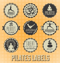 Pilates Labels and Icons vector image