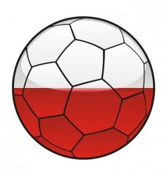 poland flag on soccer ball vector image vector image