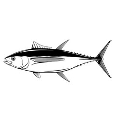bigeye tuna fish black and white vector image