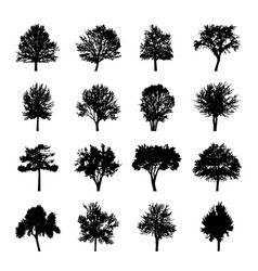 Black tree silhouettes nature forest vector