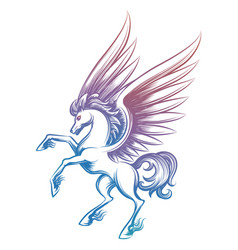 colorful sketched pegasus isolated on white vector image