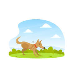 Cute dog scratching its paw on lawn in backyard on vector