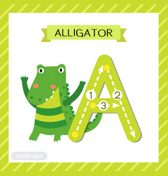 Letter a uppercase tracing alligator vector