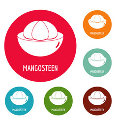 Mangosteen icons circle set vector