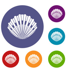 Pearl shell icons set vector