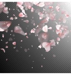 Pink sakura petals background EPS 10 vector image