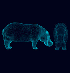 set with wireframe hippopotamus of blue lines on a vector image
