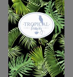 tropic leaf banner vector image