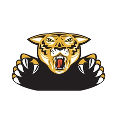 Tiger Head Head Attacking Isolated vector image vector image